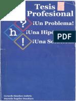 Tesis Profesional (Libro).pdf