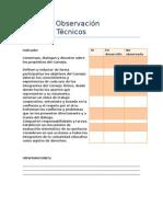 Pauta de Observación_Consejos Técnicos