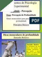 sinais monoculares profundidade princípios básicos 1
