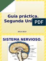 GuÃ-A PráCtica. Segunda Unidad 2012-2013 (Tipo Evaluacion)