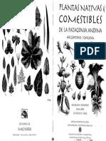 Plantas Nativas Comestibles de La Patagonia Argentina-Chilena Parte I