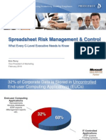 Spreadsheet Risk Management