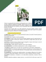 Cien Plantas Magicas.pdf