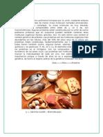 BIOMOLECULAS informe