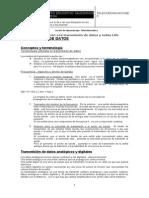 Guia 1 Teleinformatica 2011 TX de Datos