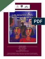 Los Desafios de la Seguridad Publica en Mexico