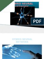 Hybrid Neural Network