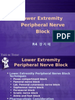[20060519]Lower Extremity Peripheral Nerve Block
