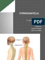 Syringomyelia New
