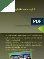 Perspectivele Științelor Sociale Seminar Grupa 2