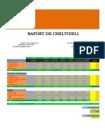 Raport de Cheltuieli