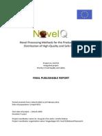 Final Publishable Report NovelQ