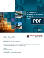 Schedule Risk Analysis for Complex Projects