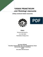 praktikum anfisman UNM makassar