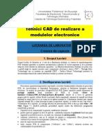 TCAD Lab6 Crearea Capsulelor