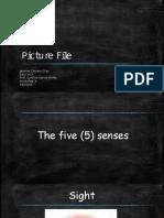 picture file ws 3