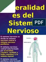 sistema-nervioso-1223743498164505-9