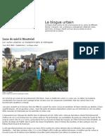 Abeilles a Montreal_Le Devoir