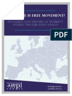 Europe Free Movement Drivers
