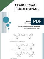 Catabolismo de Pirimidinas (1)