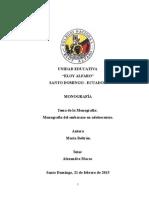 monografía Belen.docx