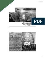 Bioseñalización-2015 CLASE 11 (1) (1).pdf