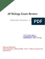 molecular genetics review notes pdf