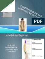 Fisioterapia en Lesión Medular