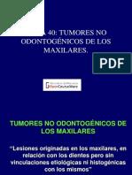 tumores no malignos