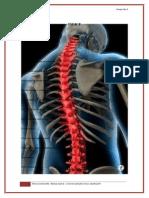 Psicologia Medula Espinal
