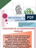 Clase, Ana Quiroga, Matrices de Aprendizaje - Evolucion de La Organizacion Familiar