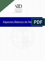 Aspectos basicos de la networking.pdf