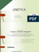 Genes Saltadores - Seminário - STOA 1