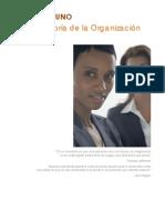 La Teoria de Las Organizaciones CARTILLA 1
