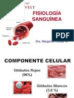 Fisiologia Sanguinea MMPA