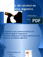 Efectos Del Alcoholismo en Sistema Gastrointestinal