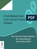 Biodiesel by Membrane Reactor