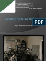 32187968-Indicadores-Energeticos.pdf