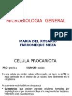 Microbiologia General Clase 20 de Abril 2015 (1)