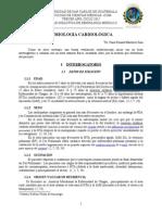 Cardio2015.pdf