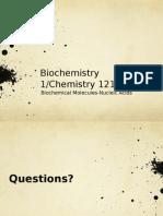 Lec 6.1-Nucleic Acids.pptx