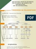 Polimorfismo en Lípidos