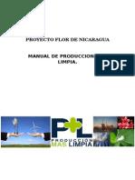 Manual de Produccion Mas Limpia..docx