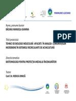 Bacanu Gianina_Raport Final Cercetare Postdoctoral (1)