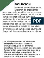 Evolución Bio II 2013