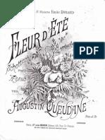 Augustin Queudane - Fleur D 'ete
