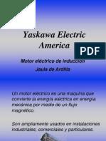 Principios de Motor Electrico de Induccion.pdf