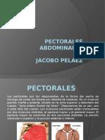 Jaco Sistemas Diapositivas