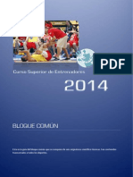 TEMA COMÚN.pdf