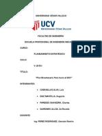 Informe Del Plan Bicentenario